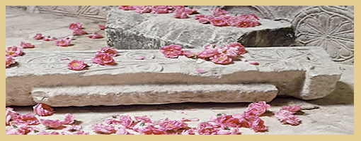 persian_rose_treatment